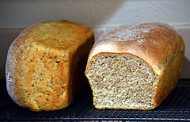 PA Bakery Recalls Bread Sold Out Of State