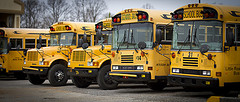 Butler Receives Bids For Bus Transportation Contracts