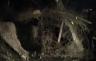 NWS: Tornado Touched Down Monday In Butler County
