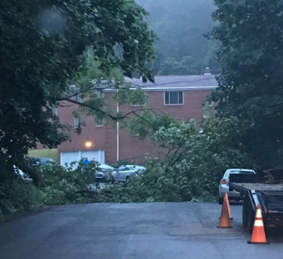 Storms Cause County Damage