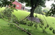 Tuesday Storms Topple Lines, Trees