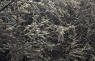 Snowy Start To April
