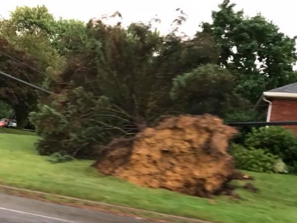 NWS: A Microburst Hit Northern Butler Co., Not A Tornado