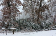 CEC Update: Monday's Plan Is To Restore Power To Areas With Most Outages First