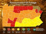 """Foliage Hitting """"Best Color"""" This Week"""