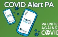COVID Alert PA App Over 320,000 Downloads