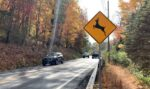 AAA: It's Now Peak Season For Deer Accidents