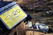 Trout Season Begins Tuesday Despite COVID-19 Pandemic