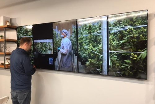 Medical marijuana sales start today