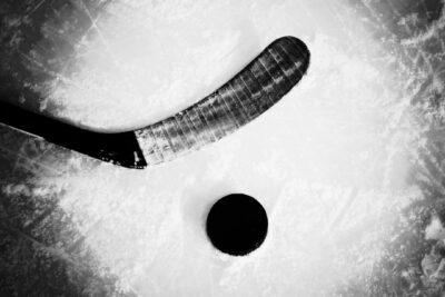 Worsley and Grasha help lead Butler hockey win